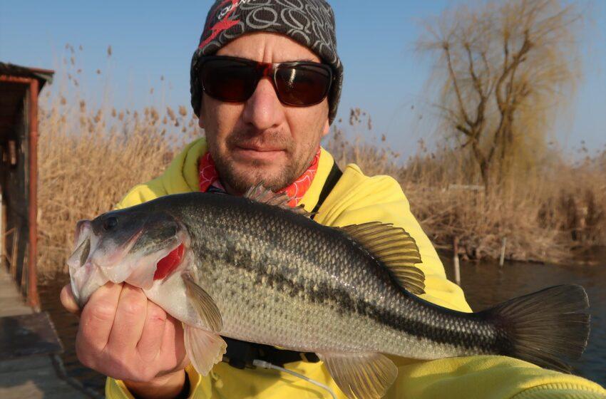 Iarna la bass, pescuit pe Tancabesti!