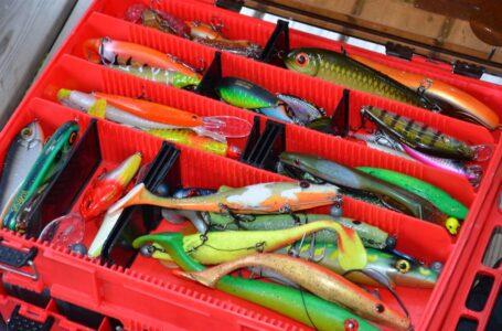 pescuit la stiuca