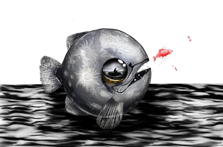 Povestea unui intro video de pescuit, AndyArif.ro!